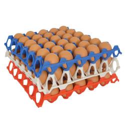 Bandeja de huevos de plástico apilable